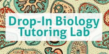bio-lab-tw