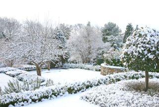 gallery-1479831408-winter-garden.jpg